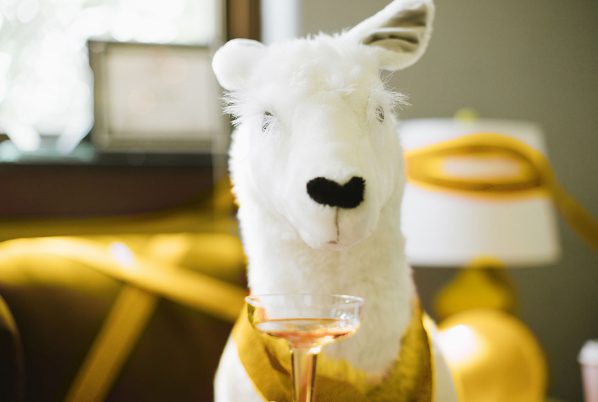 An Ollie Llama plush posed behind a glass of champagne.